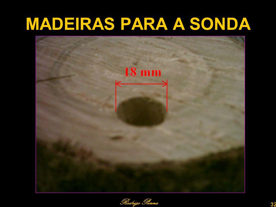 Rodrigo Penna 32 MADEIRAS PARA A SONDA