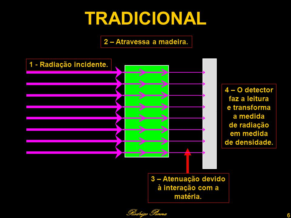 Rodrigo Penna 7 REVISÃO BIBLIOGRÁFICA – 1 A densidade é uma das mais importantes características da madeira.