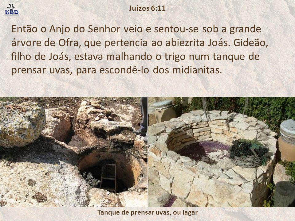 Então o Anjo do Senhor veio e sentou-se sob a grande árvore de Ofra, que pertencia ao abiezrita Joás. Gideão, filho de Joás, estava malhando o trigo n