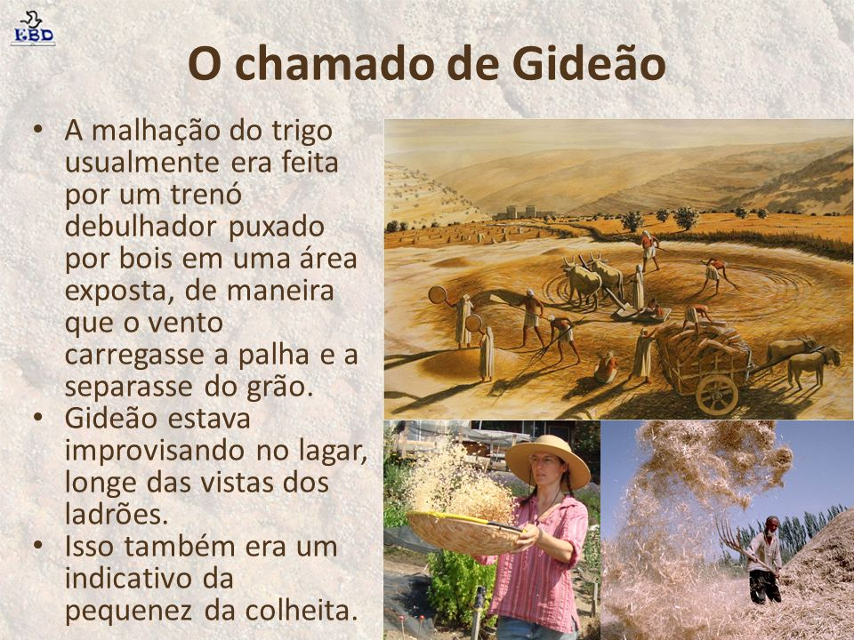 O chamado de Gideão A malhação do trigo usualmente era feita por um trenó debulhador puxado por bois em uma área exposta, de maneira que o vento carre