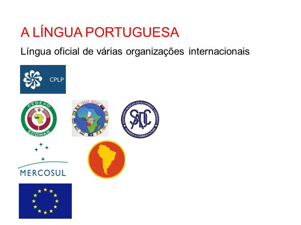 Um projeto da APAI - filiada portuguesa da IAIA, em parceria com