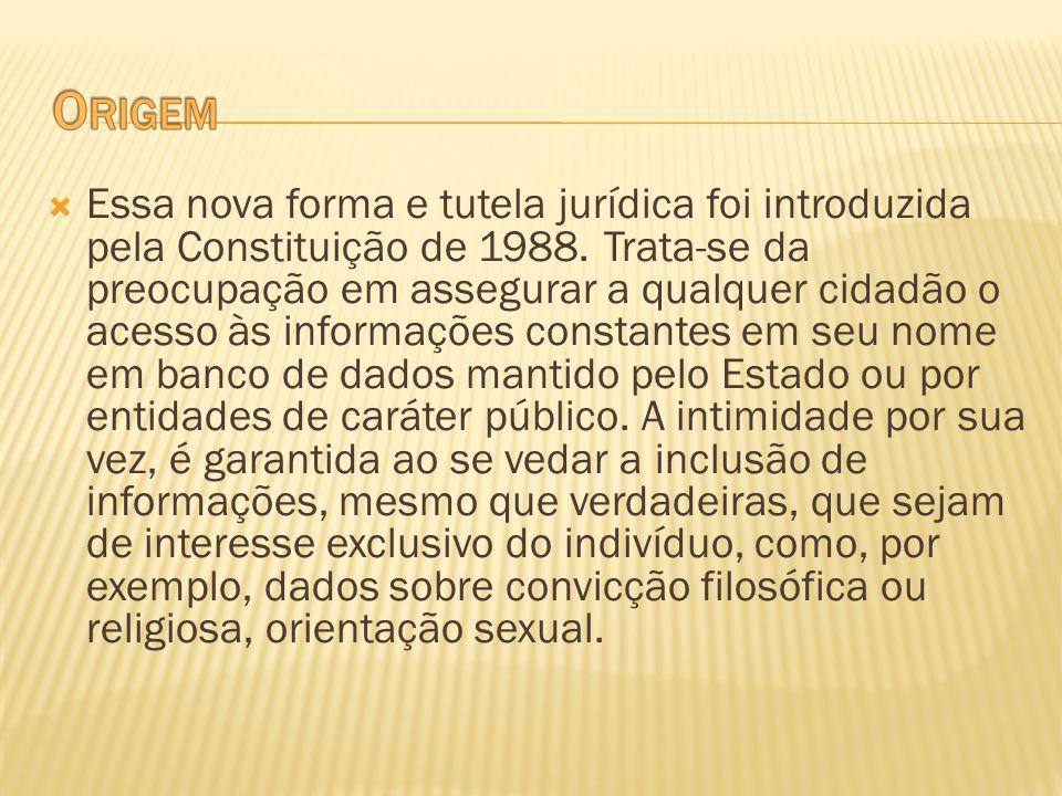 Essa nova forma e tutela jurídica foi introduzida pela Constituição de 1988. Trata-se da preocupação em assegurar a qualquer cidadão o acesso às infor