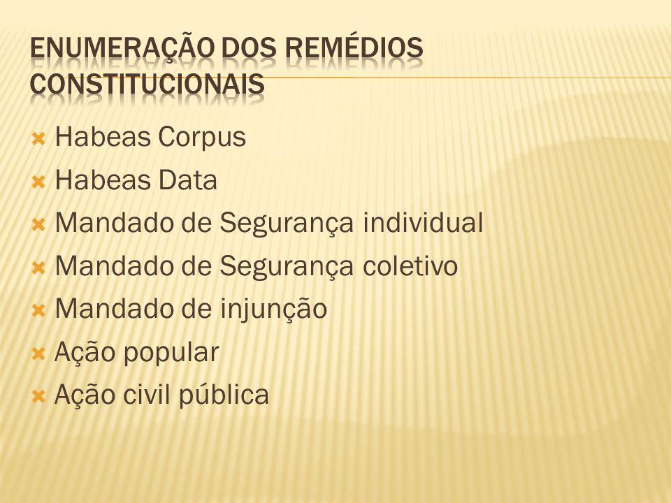 Habeas Corpus Habeas Data Mandado de Segurança individual Mandado de Segurança coletivo Mandado de injunção Ação popular Ação civil pública