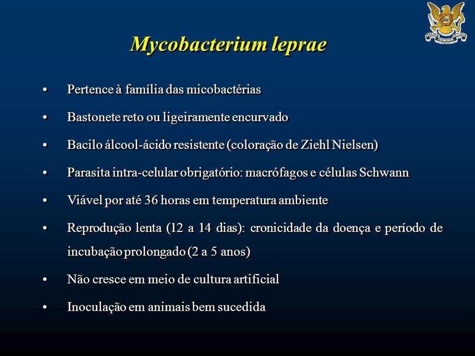 Mycobacterium leprae Pertence à família das micobactérias Bastonete reto ou ligeiramente encurvado Bacilo álcool-ácido resistente (coloração de Ziehl Nielsen) Parasita intra-celular obrigatório: macrófagos e células Schwann Viável por até 36 horas em temperatura ambiente Reprodução lenta (12 a 14 dias): cronicidade da doença e período de incubação prolongado (2 a 5 anos) Não cresce em meio de cultura artificial Inoculação em animais bem sucedida Pertence à família das micobactérias Bastonete reto ou ligeiramente encurvado Bacilo álcool-ácido resistente (coloração de Ziehl Nielsen) Parasita intra-celular obrigatório: macrófagos e células Schwann Viável por até 36 horas em temperatura ambiente Reprodução lenta (12 a 14 dias): cronicidade da doença e período de incubação prolongado (2 a 5 anos) Não cresce em meio de cultura artificial Inoculação em animais bem sucedida