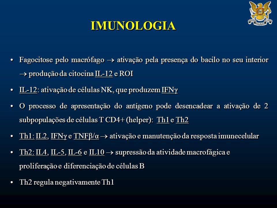 IMUNOLOGIA Fagocitose pelo macrófago ativação pela presença do bacilo no seu interior produção da citocina IL-12 e ROI IL-12: ativação de células NK, que produzem IFNγ O processo de apresentação do antígeno pode desencadear a ativação de 2 subpopulações de células T CD4+ (helper): Th1 e Th2 Th1: IL2, IFNγ e TNFβ/α ativação e manutenção da resposta imunecelular Th2: IL4, IL-5, IL-6 e IL10 supressão da atividade macrofágica e proliferação e diferenciação de células B Th2 regula negativamente Th1 Fagocitose pelo macrófago ativação pela presença do bacilo no seu interior produção da citocina IL-12 e ROI IL-12: ativação de células NK, que produzem IFNγ O processo de apresentação do antígeno pode desencadear a ativação de 2 subpopulações de células T CD4+ (helper): Th1 e Th2 Th1: IL2, IFNγ e TNFβ/α ativação e manutenção da resposta imunecelular Th2: IL4, IL-5, IL-6 e IL10 supressão da atividade macrofágica e proliferação e diferenciação de células B Th2 regula negativamente Th1