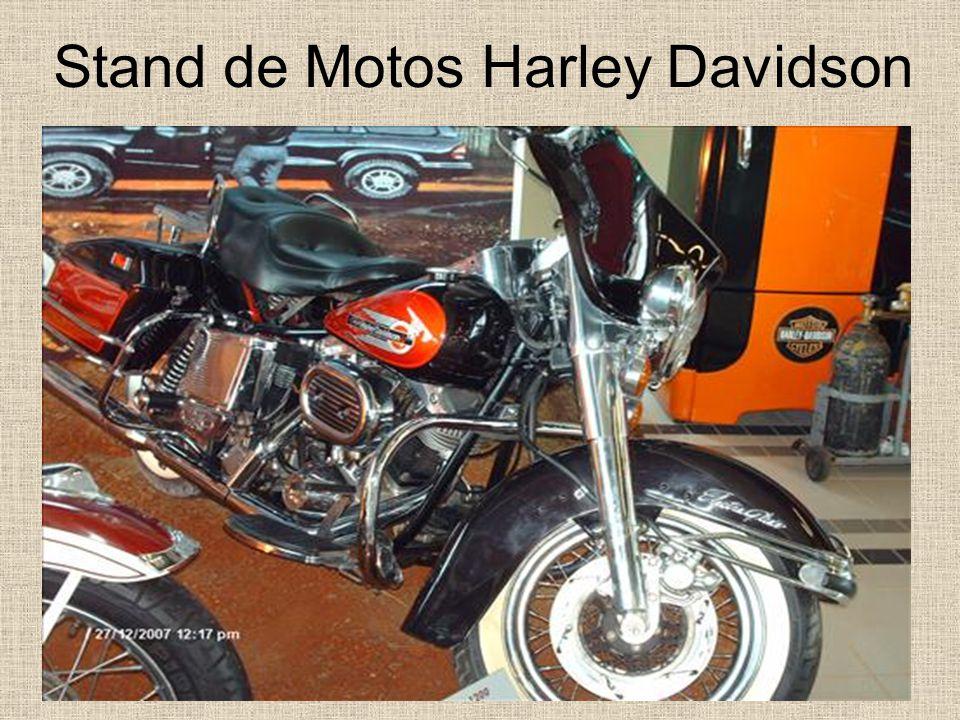 Motos Amazonas (note o motor de VW 1.6)