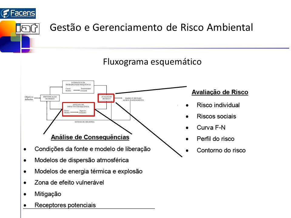 Gestão e Gerenciamento de Risco Ambiental Fluxograma esquemático