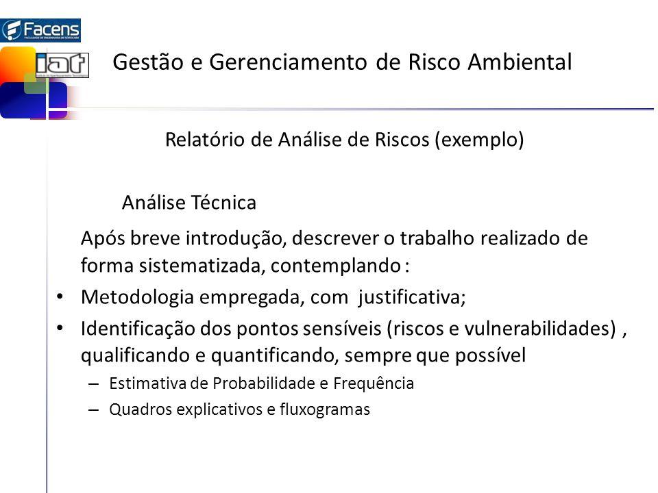Gestão e Gerenciamento de Risco Ambiental Relatório de Análise de Riscos (exemplo) Análise Técnica Após breve introdução, descrever o trabalho realiza