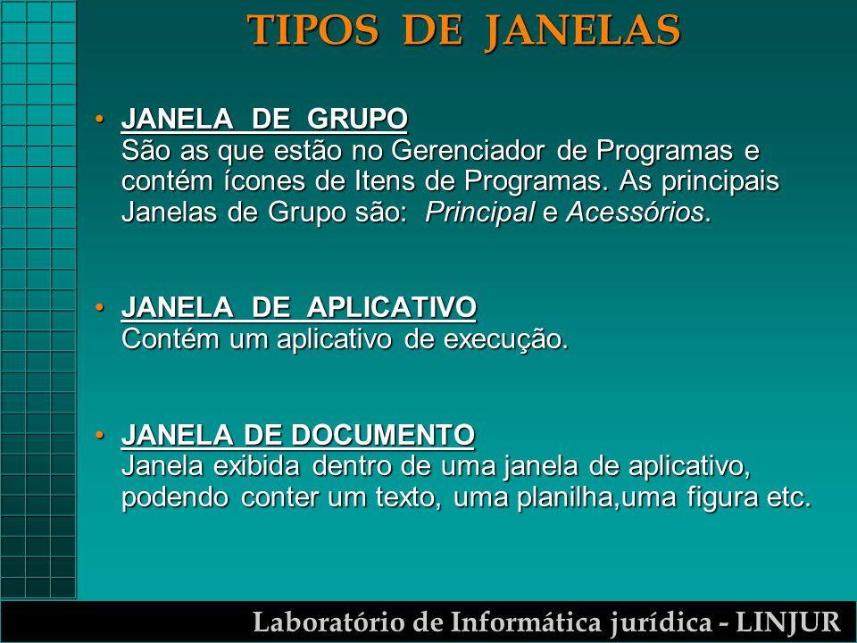 Laboratório de Informática jurídica - LINJUR TIPOS DE JANELAS JANELA DE GRUPO São as que estão no Gerenciador de Programas e contém ícones de Itens de