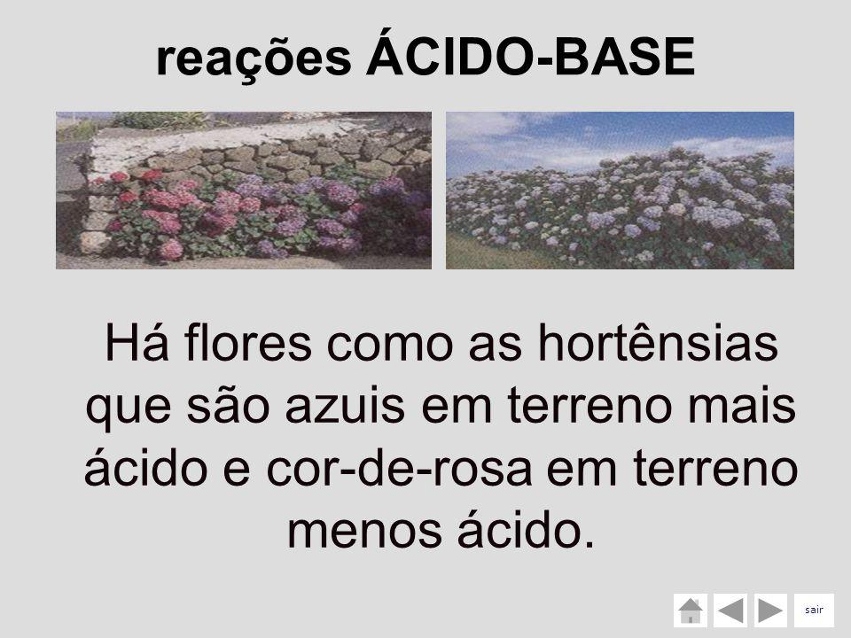 Há flores como as hortênsias que são azuis em terreno mais ácido e cor-de-rosa em terreno menos ácido. reações ÁCIDO-BASE sair