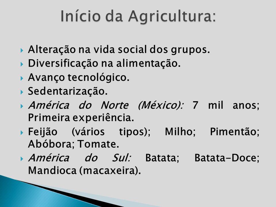 Alteração na vida social dos grupos. Diversificação na alimentação. Avanço tecnológico. Sedentarização. América do Norte (México): 7 mil anos; Primeir
