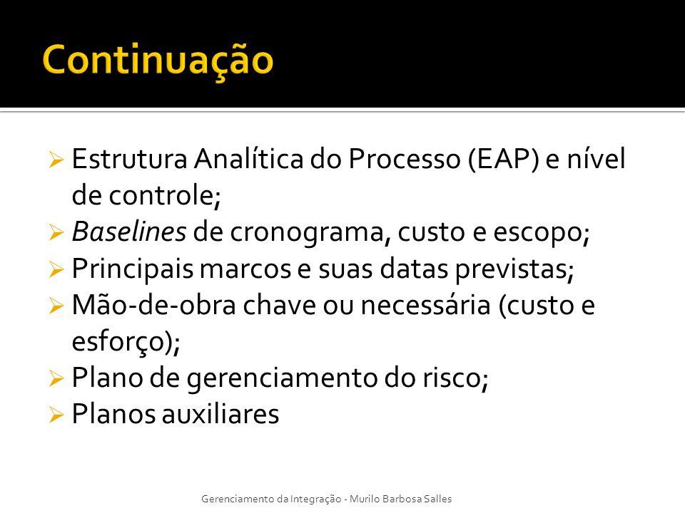 Estrutura Analítica do Processo (EAP) e nível de controle; Baselines de cronograma, custo e escopo; Principais marcos e suas datas previstas; Mão-de-o