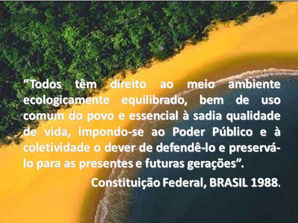 LEGISLAÇÃO AMBIENTAL BRASILEIRA Constituição Federal - CAPÍTULO VI O Meio Ambiente - Art. 205 37 Todos têm direito ao meio ambiente ecologicamente equ