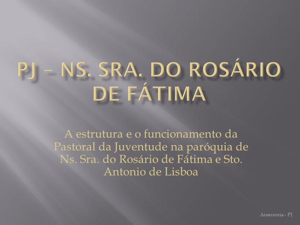 A estrutura e o funcionamento da Pastoral da Juventude na paróquia de Ns.