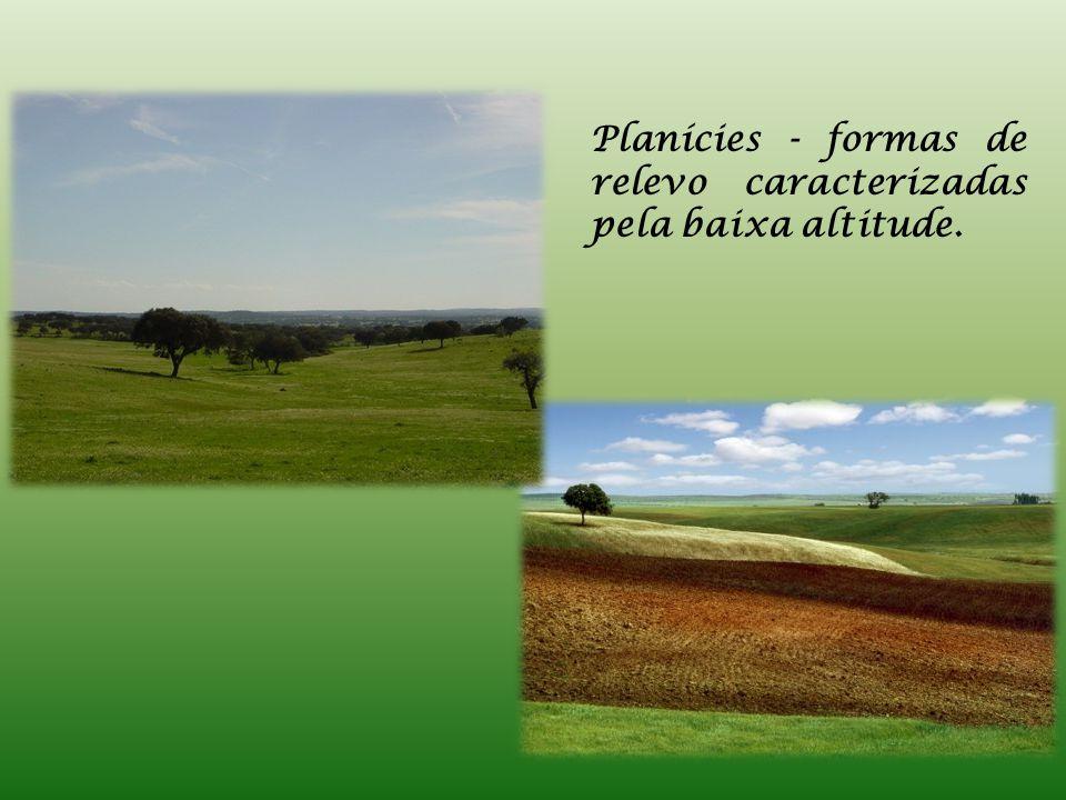 Planícies - formas de relevo caracterizadas pela baixa altitude.
