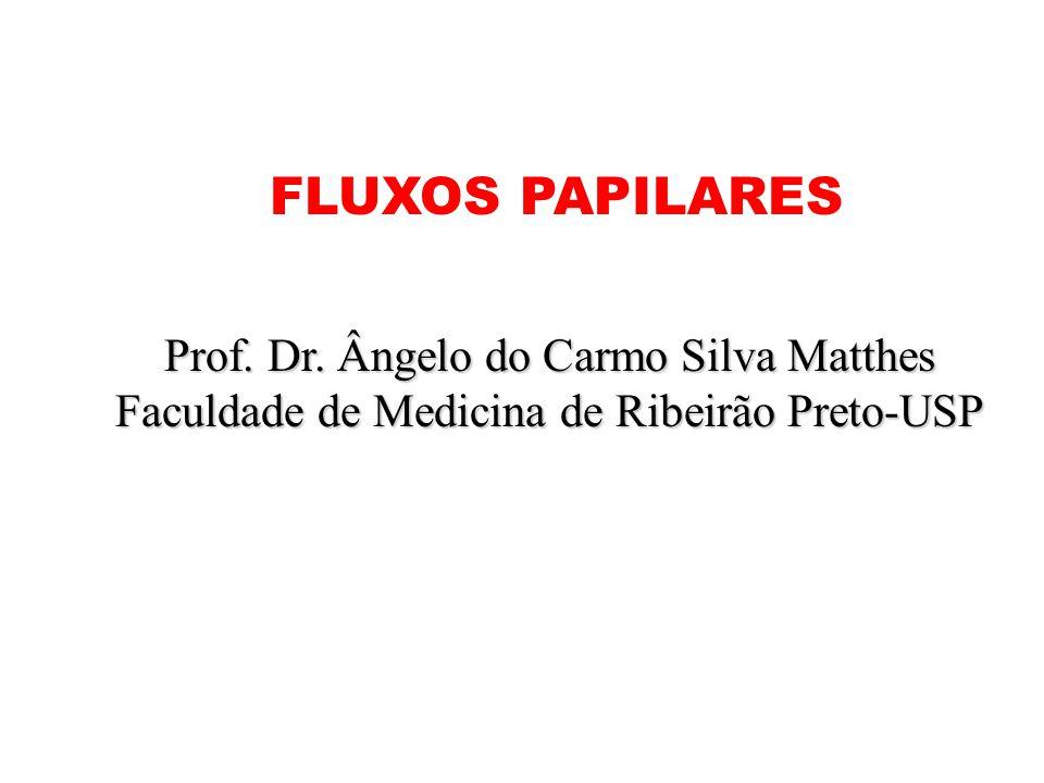 FLUXOS PAPILARES Prof. Dr. Ângelo do Carmo Silva Matthes Faculdade de Medicina de Ribeirão Preto-USP