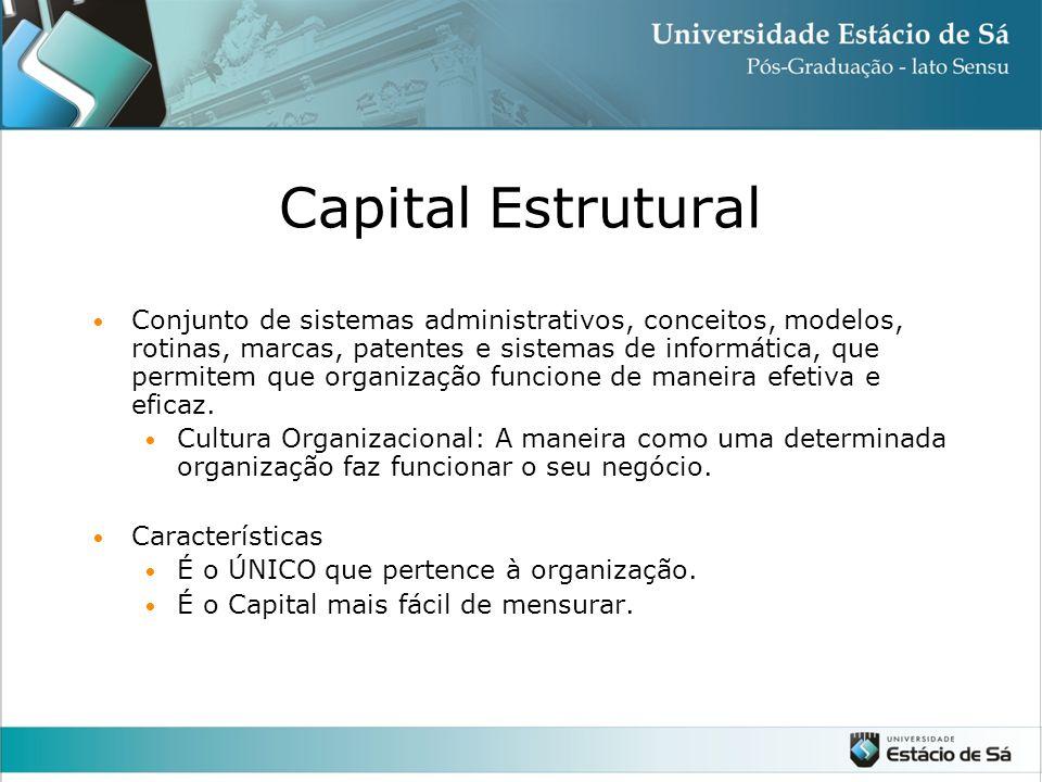 Capital Estrutural Conjunto de sistemas administrativos, conceitos, modelos, rotinas, marcas, patentes e sistemas de informática, que permitem que organização funcione de maneira efetiva e eficaz.