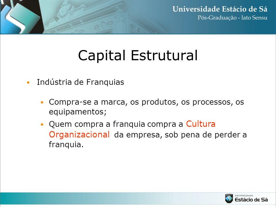 Indústria de Franquias Compra-se a marca, os produtos, os processos, os equipamentos; Quem compra a franquia compra a Cultura Organizacional da empresa, sob pena de perder a franquia.