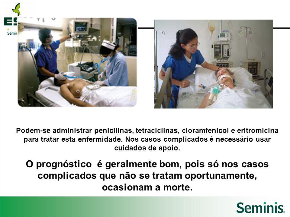 Podem-se administrar penicilinas, tetraciclinas, cloramfenicol e eritromicina para tratar esta enfermidade. Nos casos complicados é necessário usar cu