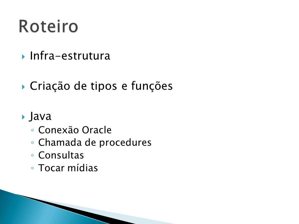 Infra-estrutura Criação de tipos e funções Java Conexão Oracle Chamada de procedures Consultas Tocar mídias