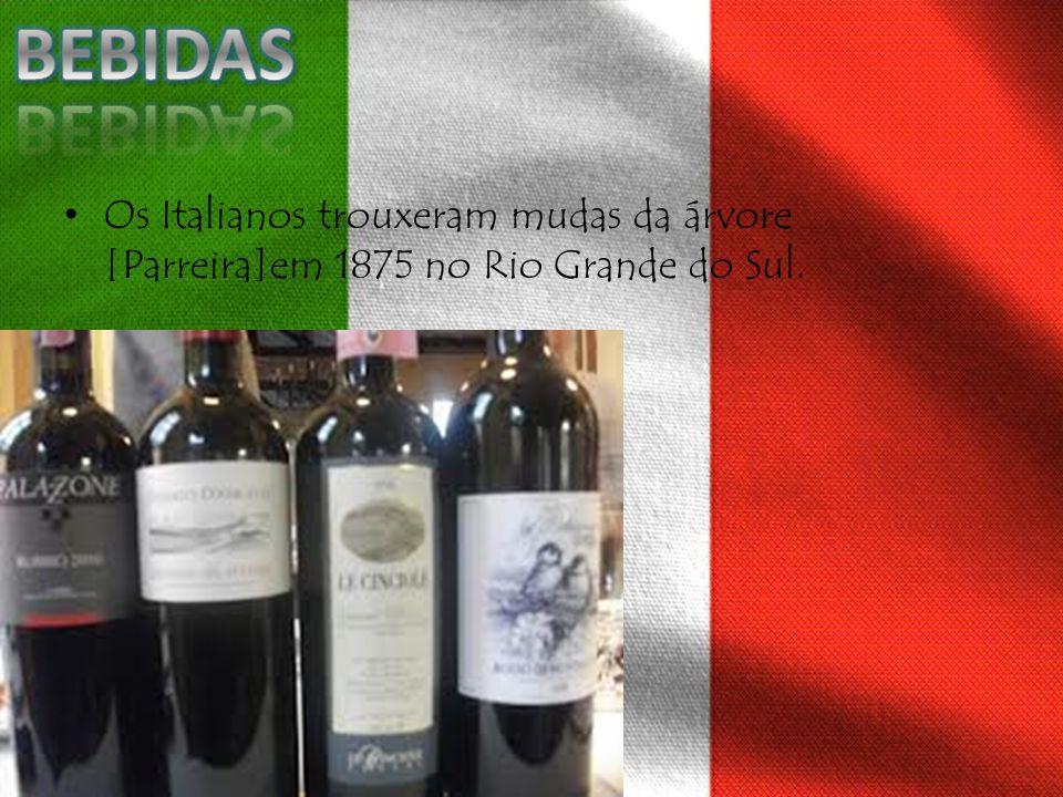 Os Italianos trouxeram mudas da árvore [Parreira]em 1875 no Rio Grande do Sul.