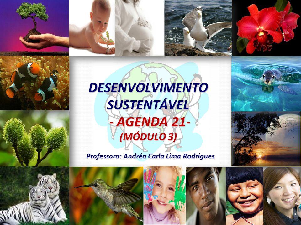 DESENVOLVIMENTO SUSTENTÁVEL - AGENDA 21- - AGENDA 21- (MÓDULO 3) Professora: Andréa Carla Lima Rodrigues