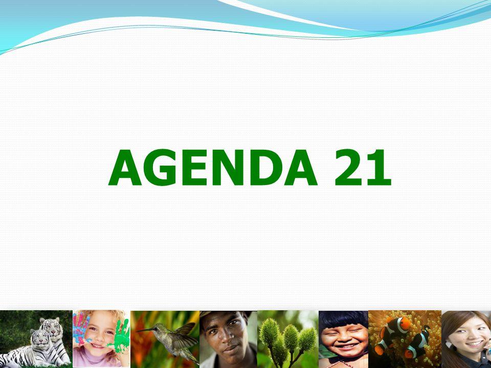 AGENDA 21 11