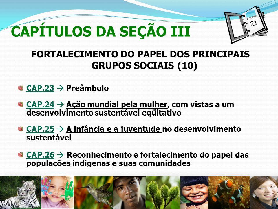 CAPÍTULOS DA SEÇÃO III FORTALECIMENTO DO PAPEL DOS PRINCIPAIS GRUPOS SOCIAIS (10) CAP.23 Preâmbulo CAP.24 Ação mundial pela mulher, com vistas a um de