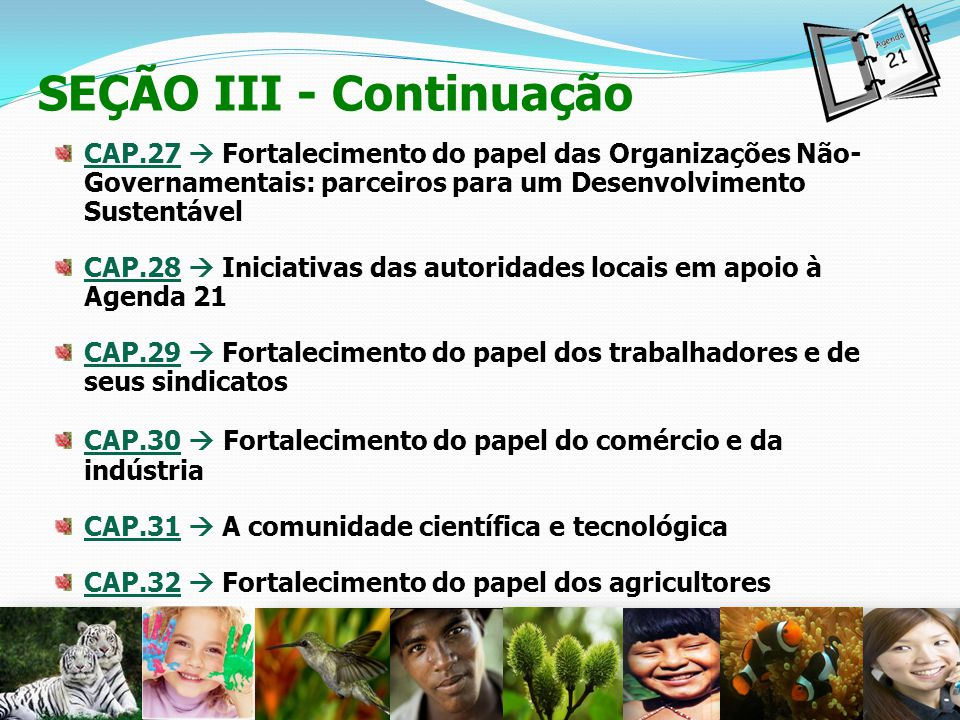 22 SEÇÃO III - Continuação CAP.27 Fortalecimento do papel das Organizações Não- Governamentais: parceiros para um Desenvolvimento Sustentável CAP.28 I