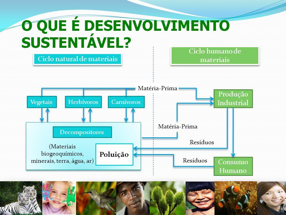 O QUE É DESENVOLVIMENTO SUSTENTÁVEL? 3 VegetaisHerbívorosCarnívoros Decompositores (Materiais biogeoquímicos, minerais, terra, água, ar) Poluição Prod