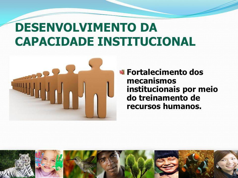 DESENVOLVIMENTO DA CAPACIDADE INSTITUCIONAL Fortalecimento dos mecanismos institucionais por meio do treinamento de recursos humanos. 31