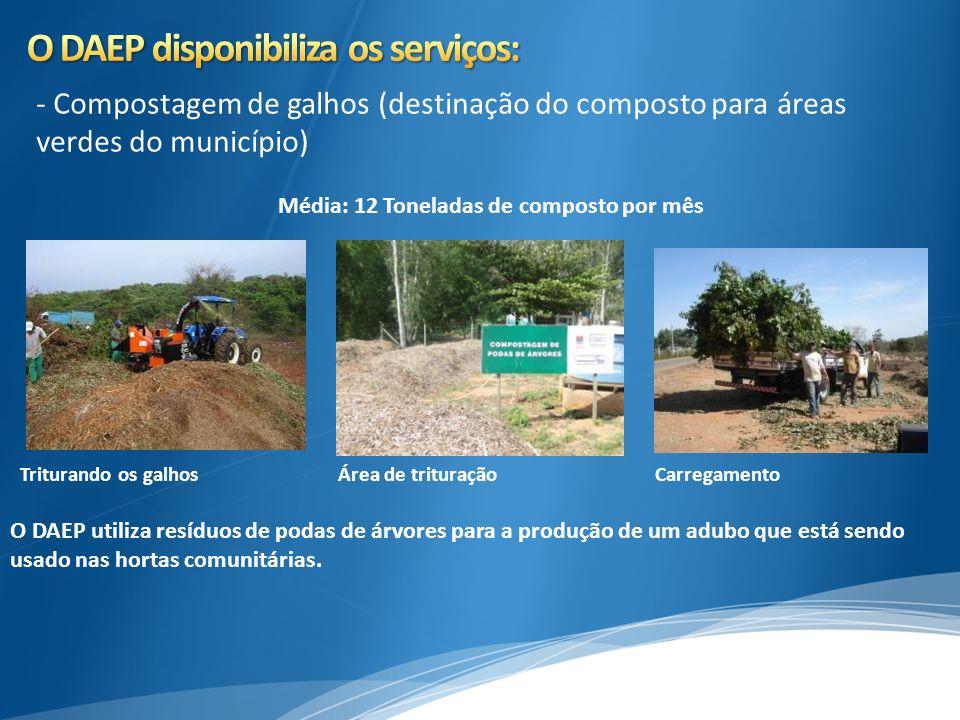 - Compostagem de galhos (destinação do composto para áreas verdes do município) Triturando os galhosÁrea de trituraçãoCarregamento O DAEP utiliza resí