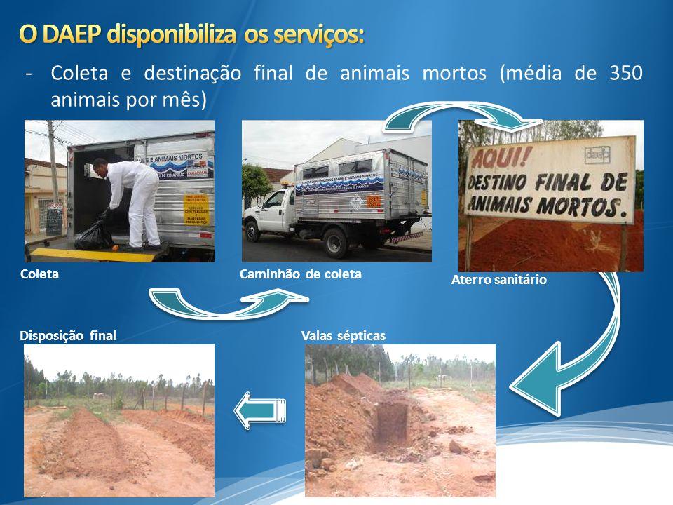 - Investimento de R$ 825.000,00 no Consorcio Ribeirão Lajeado para preservação do Ribeirão Lajeado.