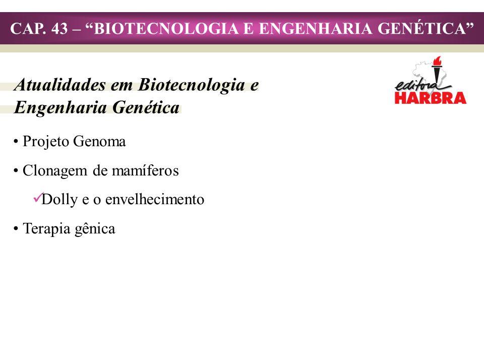 CAP. 43 – BIOTECNOLOGIA E ENGENHARIA GENÉTICA Atualidades em Biotecnologia e Engenharia Genética Projeto Genoma Clonagem de mamíferos Dolly e o envelh