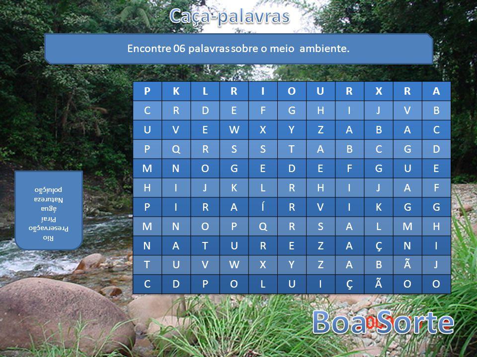 Encontre 06 palavras sobre o meio ambiente. Rio Preservação Piraí água Natureza poluição