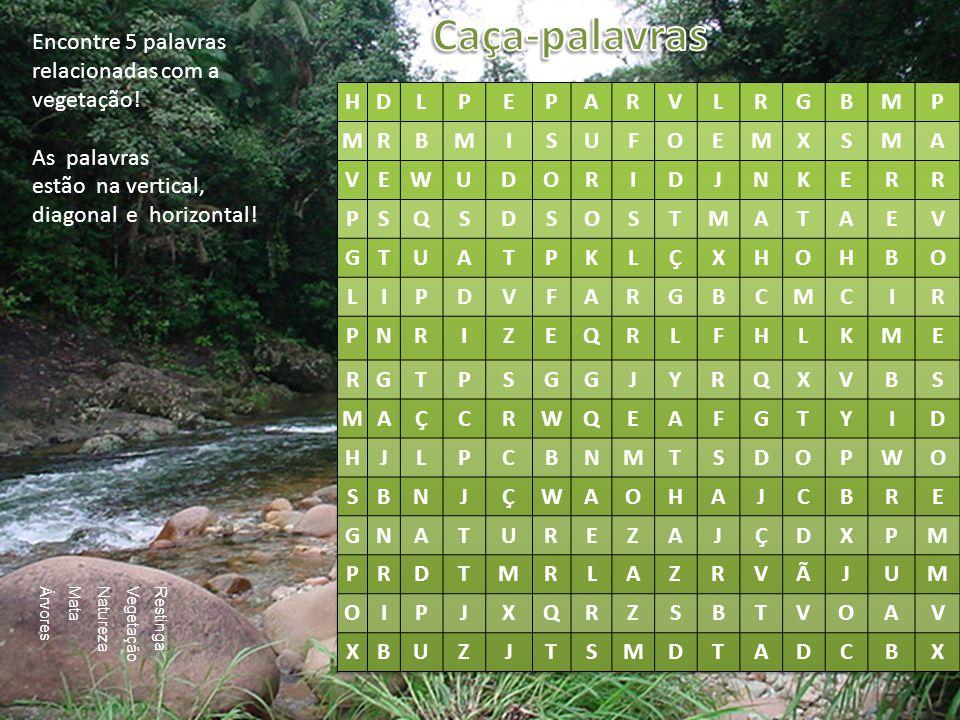 Encontre 5 palavras relacionadas com a vegetação! As palavras estão na vertical, diagonal e horizontal! Restinga Vegetação Natureza Mata Árvores