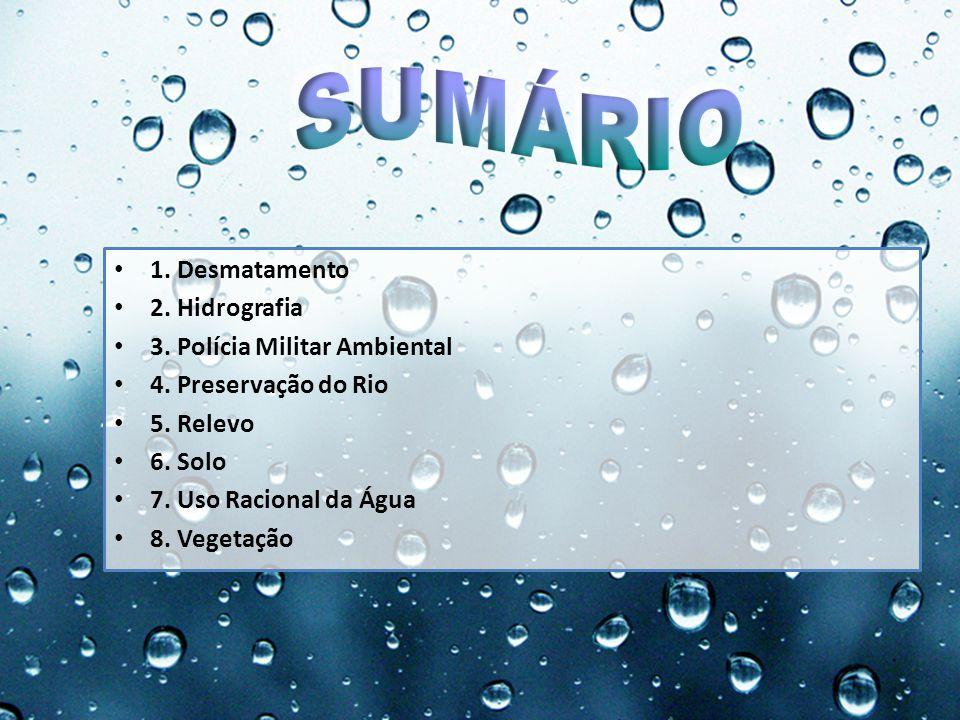 1. Desmatamento 2. Hidrografia 3. Polícia Militar Ambiental 4. Preservação do Rio 5. Relevo 6. Solo 7. Uso Racional da Água 8. Vegetação