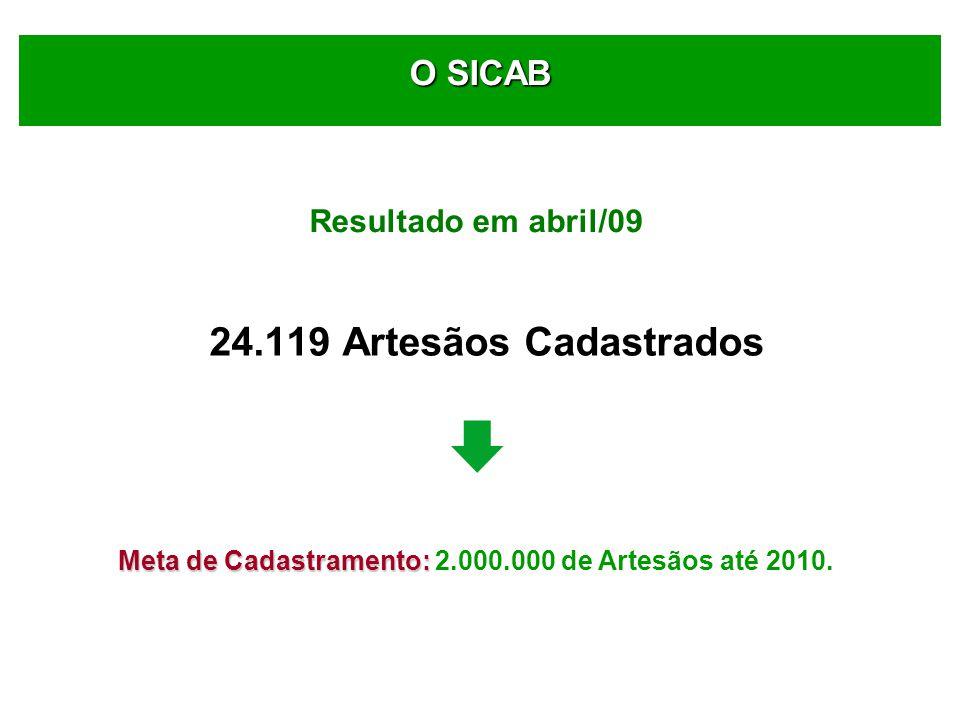 24.119 Artesãos Cadastrados Meta de Cadastramento: Meta de Cadastramento: 2.000.000 de Artesãos até 2010.
