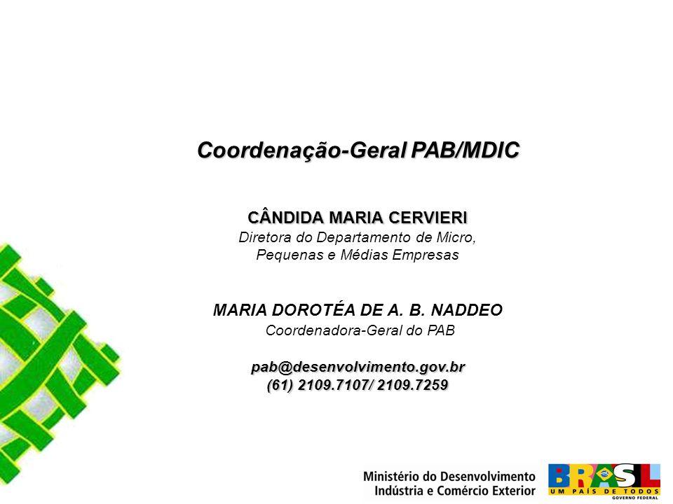 Coordenação-Geral PAB/MDIC CÂNDIDA MARIA CERVIERI CÂNDIDA MARIA CERVIERI Diretora do Departamento de Micro, Pequenas e Médias Empresas MARIA DOROTÉA DE A.