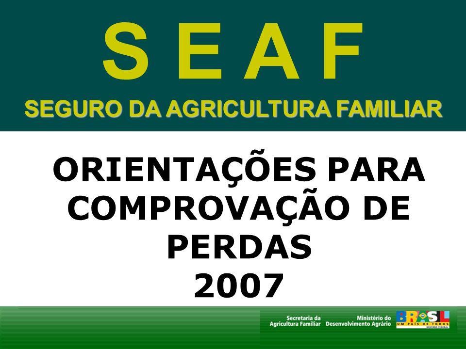 SEGURO DA AGRICULTURA FAMILIAR ORIENTAÇÕES PARA COMPROVAÇÃO DE PERDAS 2007 S E A F SEGURO DA AGRICULTURA FAMILIAR
