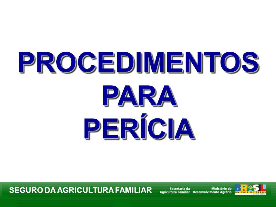 SEGURO DA AGRICULTURA FAMILIAR PROCEDIMENTOS PARA PERÍCIA