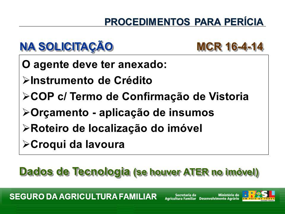 SEGURO DA AGRICULTURA FAMILIAR O agente deve ter anexado: Instrumento de Crédito COP c/ Termo de Confirmação de Vistoria Orçamento - aplicação de insu