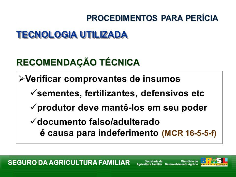 SEGURO DA AGRICULTURA FAMILIAR Verificar comprovantes de insumos sementes, fertilizantes, defensivos etc produtor deve mantê-los em seu poder document