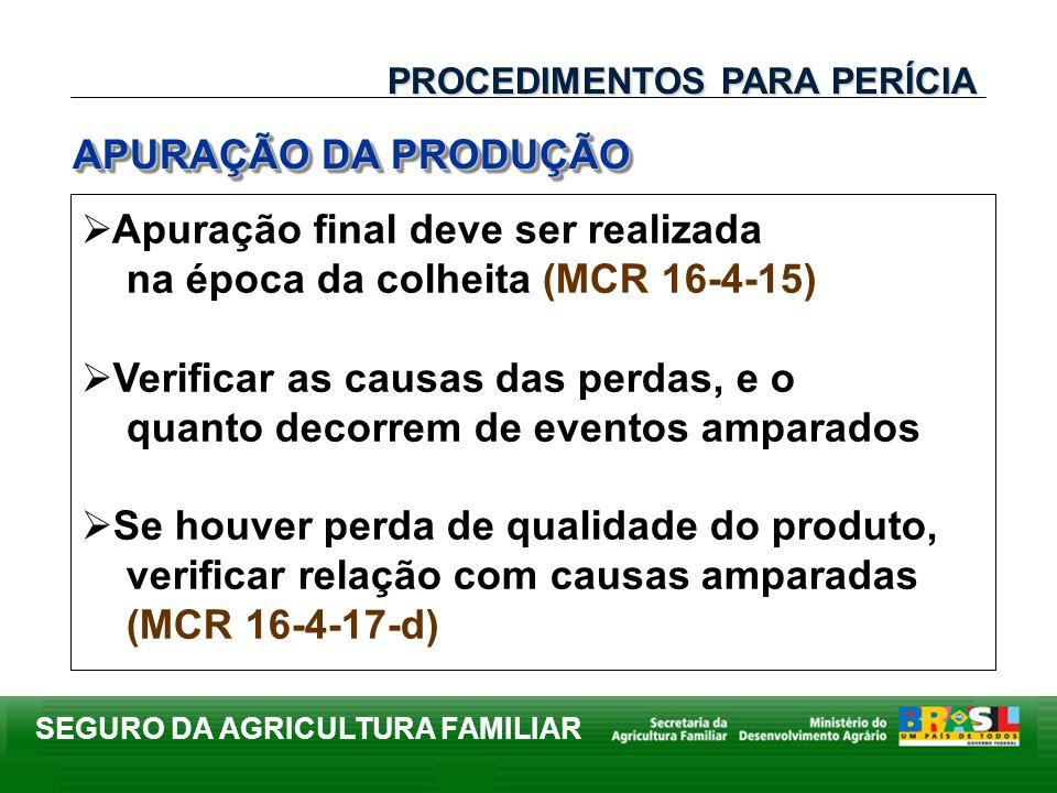 SEGURO DA AGRICULTURA FAMILIAR Apuração final deve ser realizada na época da colheita (MCR 16-4-15) Verificar as causas das perdas, e o quanto decorre