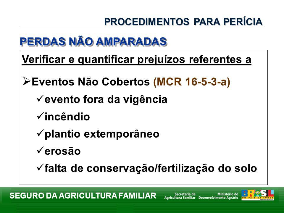 SEGURO DA AGRICULTURA FAMILIAR Verificar e quantificar prejuízos referentes a Eventos Não Cobertos (MCR 16-5-3-a) evento fora da vigência incêndio pla