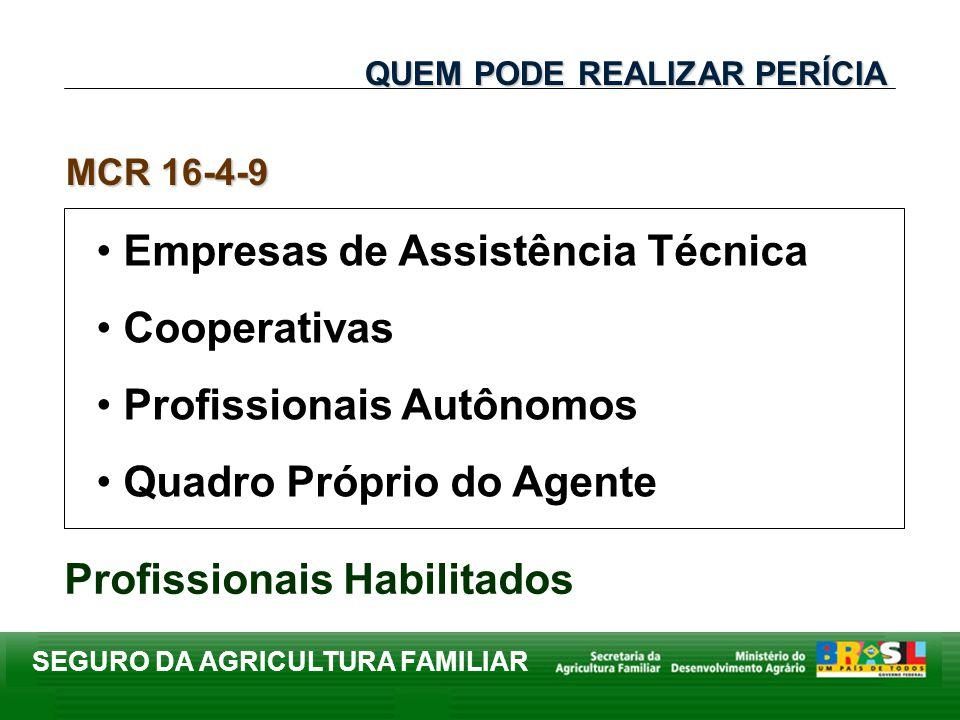 SEGURO DA AGRICULTURA FAMILIAR Empresas de Assistência Técnica Cooperativas Profissionais Autônomos Quadro Próprio do Agente MCR 16-4-9 Profissionais