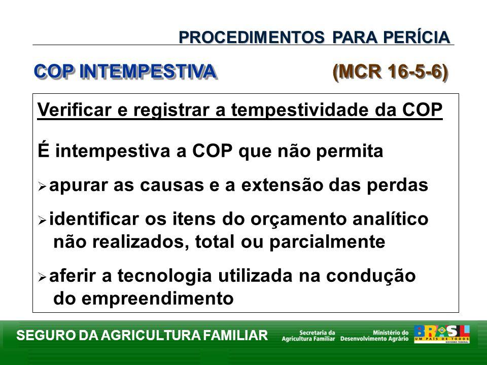 SEGURO DA AGRICULTURA FAMILIAR Verificar e registrar a tempestividade da COP É intempestiva a COP que não permita apurar as causas e a extensão das pe