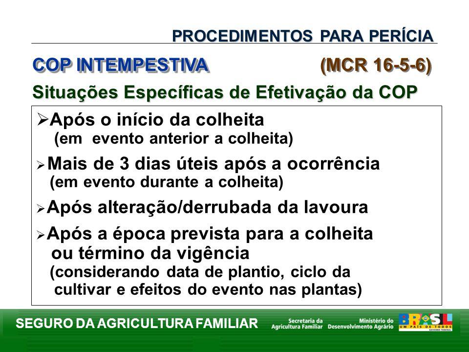 SEGURO DA AGRICULTURA FAMILIAR Após o início da colheita (em evento anterior a colheita) Mais de 3 dias úteis após a ocorrência (em evento durante a c