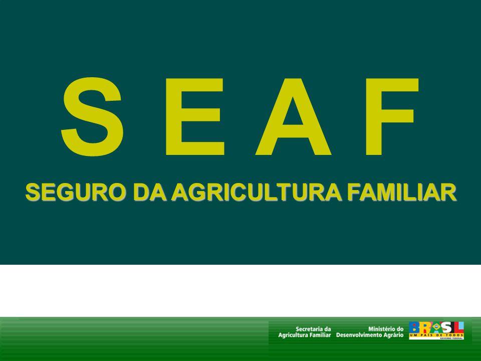 SEGURO DA AGRICULTURA FAMILIAR S E A F SEGURO DA AGRICULTURA FAMILIAR