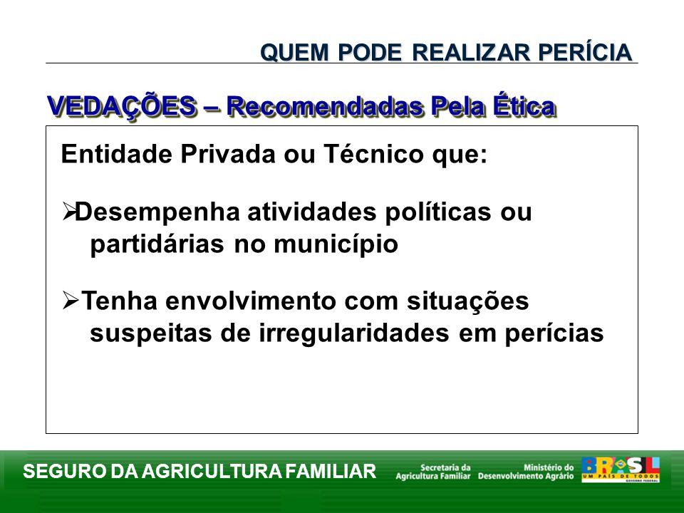 SEGURO DA AGRICULTURA FAMILIAR Entidade Privada ou Técnico que: Desempenha atividades políticas ou partidárias no município Tenha envolvimento com sit